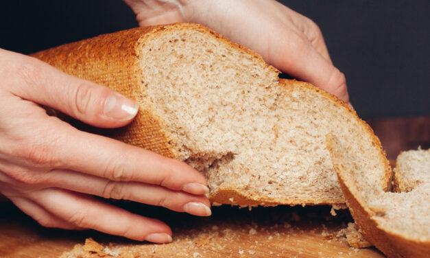 Jak wybrać najlepszy wypiekacz do chleba?