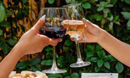 Chłodziarka do wina – czy warto ją mieć w swojej kuchni?