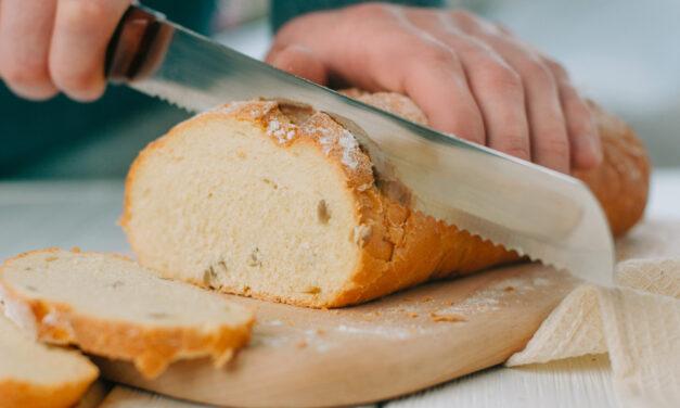 Chlebak – wszystko, co musisz o nim wiedzieć