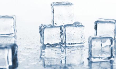 Kostkarka do lodu – kto powinien się w nią zaopatrzyć?