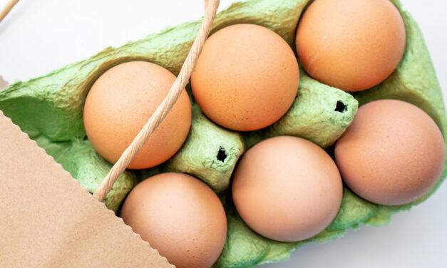 Najlepszy jajowar do gotowania jajek – Ranking 2021