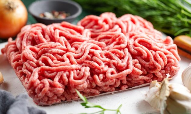 Najlepsza maszynka do mielenia mięsa – Ranking 2021