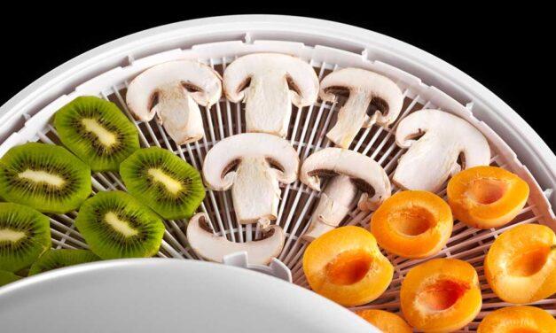 Najlepsza suszarka do grzybów – Ranking 2021